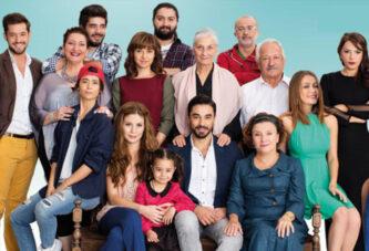 Porodica mog muza 20 epizoda